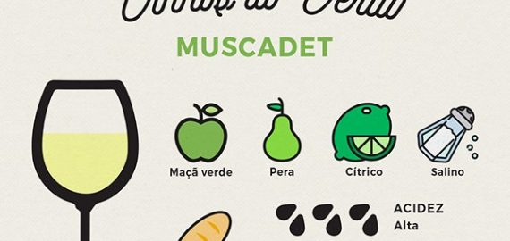 muscadet enocultura whats on 570x270 - MUSCADET