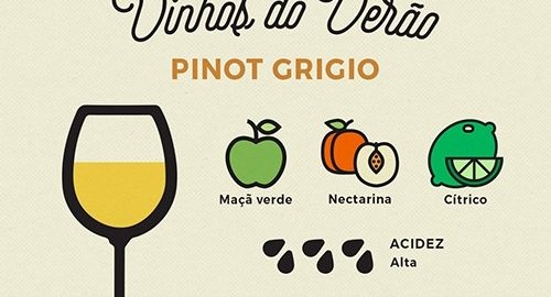 pinot grigio whats on enocultura 500x270 - PINOT GRIGIO