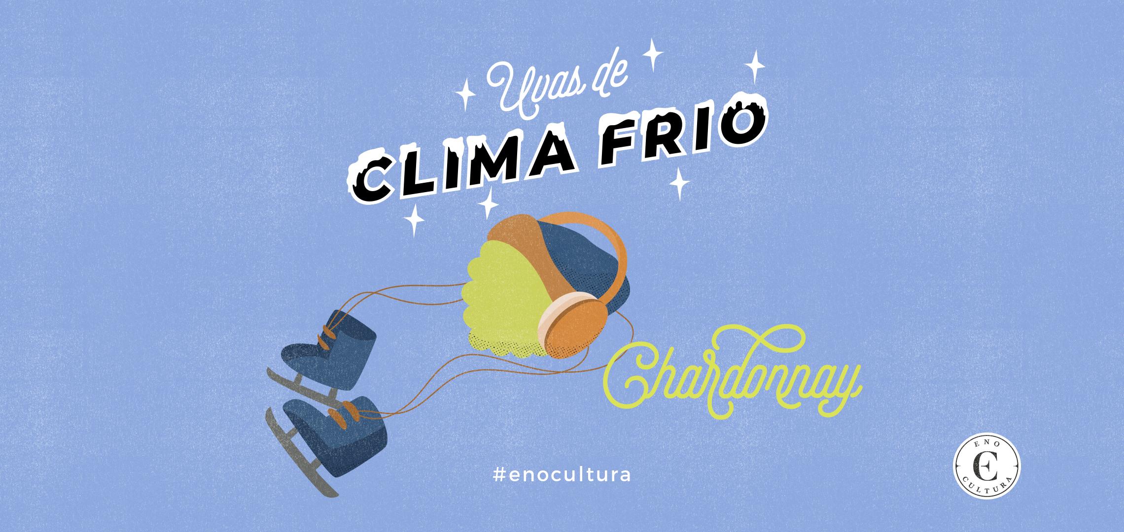 Uvas de Clima Frio: Chardonnay