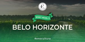 Belo Horizonte 2 300x150 - WSET Nível 3 - BHZ/Out