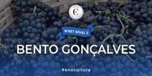 Bento Goncalves 1 300x150 - WSET Nível 2