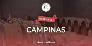 Campinas 1 300x150 - WSET Nível 1