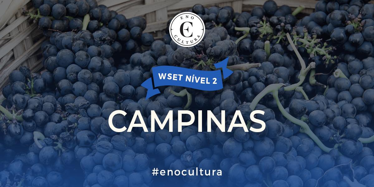 Campinas 2 - WSET Nível 2