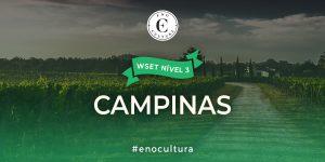 Campinas 3 300x150 - WSET Nível 3