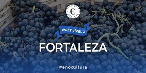 Fortaleza 2 300x150 - WSET Nível 2