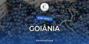 Goiania 2 300x150 - WSET Nível 2