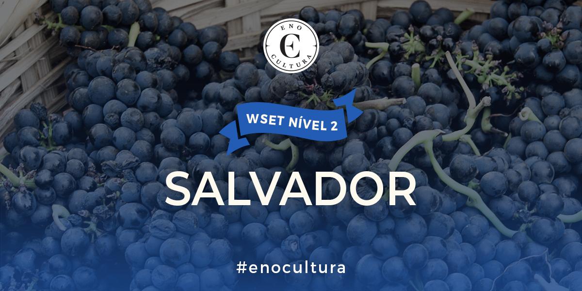 Salvador 2 - WSET Nível 2